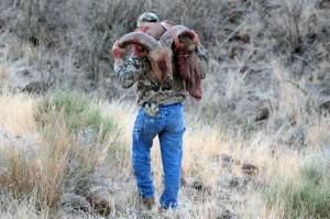 Aoudad Hunting is big in Texas