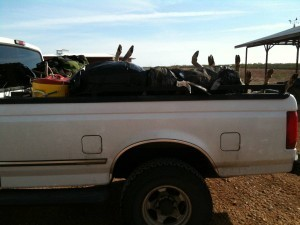 Texas Deer Hunting - a full load of whitetail