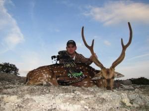 Exotic Hunts in Texas - Axis Deer Bowhunting