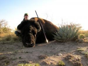 Bison hunts in Texas