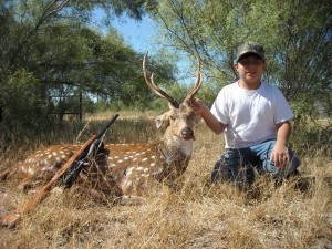 Hunting Axis Deer in Texas
