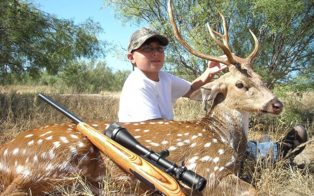 Hunting Axis Deer in the Texas Summer Heat