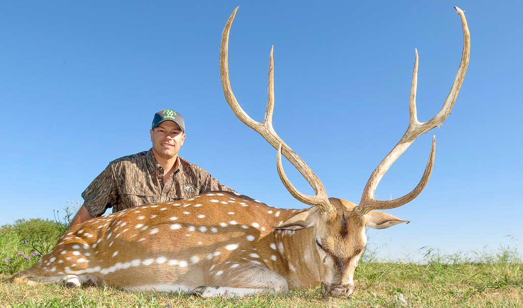 Hunter with large Axis Deer Stag - Axis Deer Hunting Texas