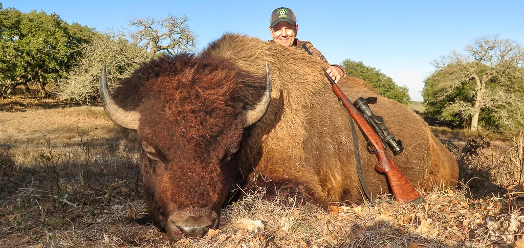 Hunter posing with dead bison