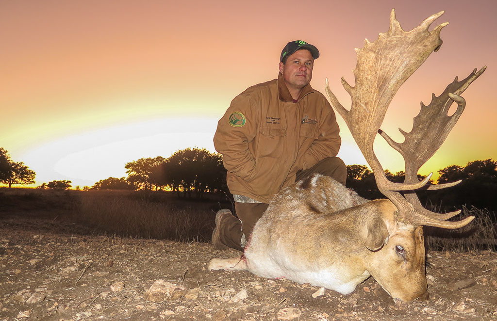 Hunter with spotted fallow deer posing at sunset in Texas