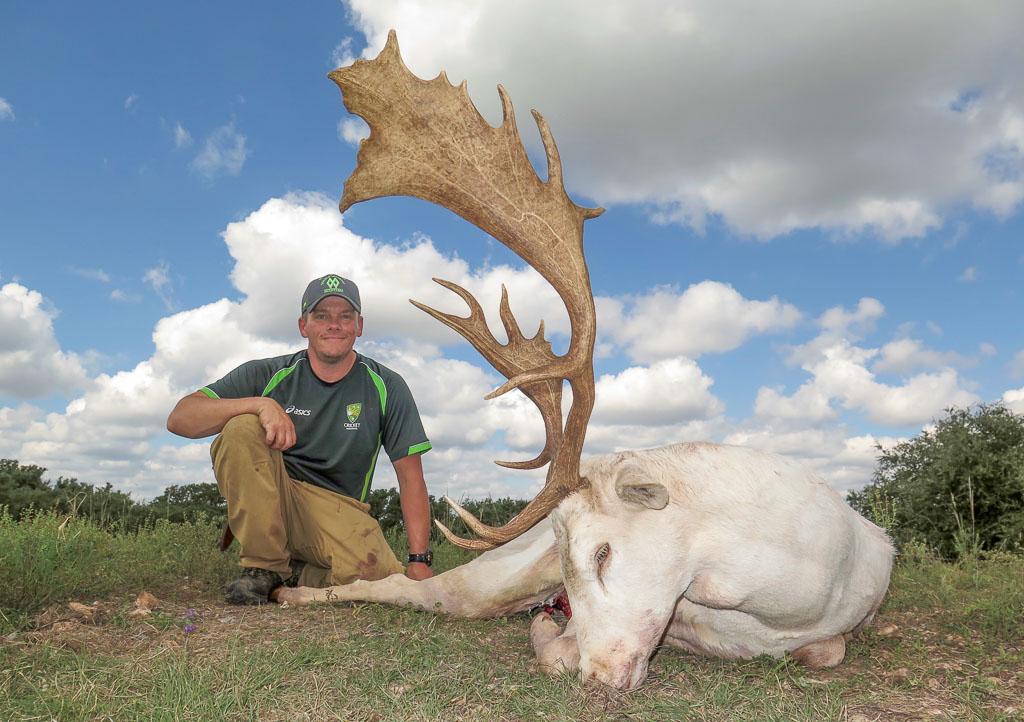 Hunter with white fallow deer