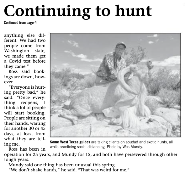 "PressClip2 - ""Texas Outfitters still taking hunters"" with picture of hunter with Aoudad"
