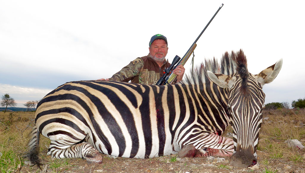 Successful Zebra hunting in Texas - Hunter posing with Zebra after hunt